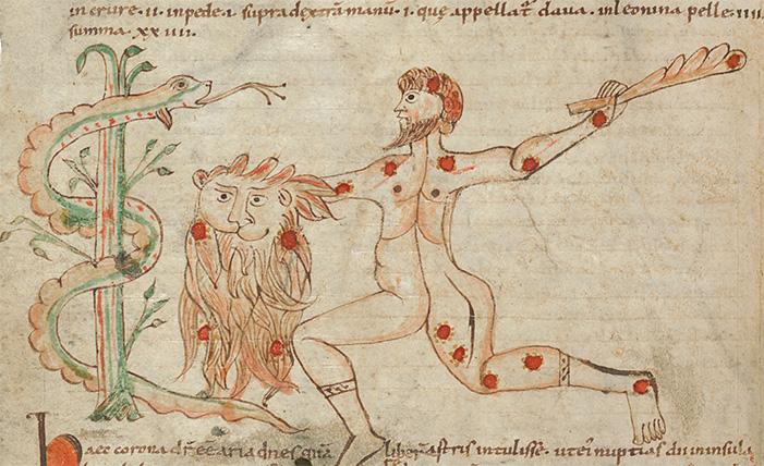 Sternbilder der Antike, fol. 13v mit dem Sternbild des Herkules