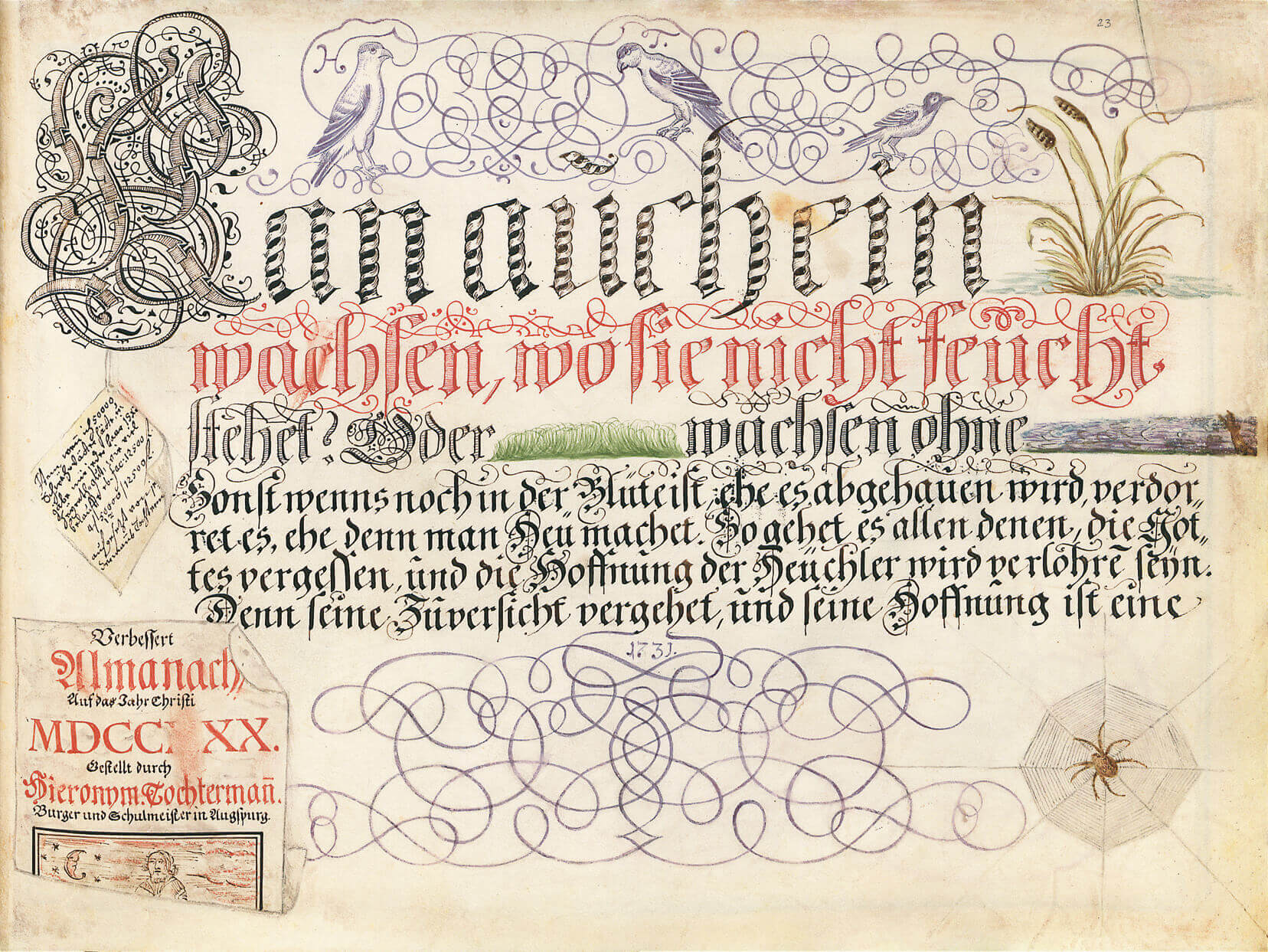 Schreibmeisterbuch des Hieronymus Tochtermann, p. 45 (fol. 23r)